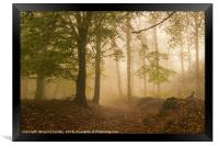 Alone in the Mist, Framed Print