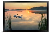 Dawn tranquility on the Norfolk Broads, Framed Print
