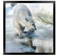 lovely weather today, Framed Print