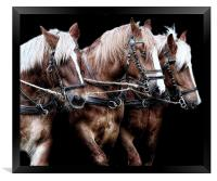 Three is a magic number, Framed Print