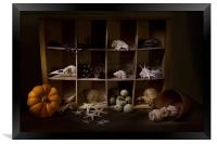Halloween Collection, Framed Print