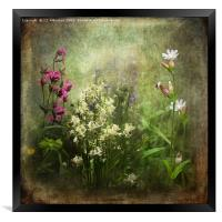 Wildflower Symphony, Framed Print