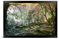 At The Edge of The Wild Wood, Framed Print