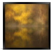 Abstract Birch Reflections, Framed Print
