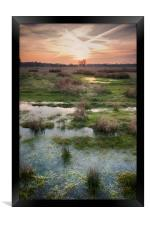 South Willesborough Sunset, Framed Print