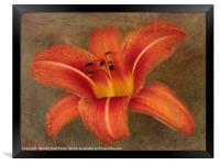 Beauty Within, Framed Print