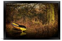 Yellow Rowing Boat, Framed Print