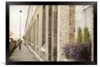 Quiet street and window flowers, Framed Print