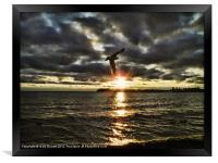Catching The Last Ray, Framed Print