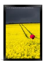 Red and Yellow and..., Framed Print