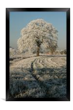 Frosty Day in Staffordshire, Framed Print