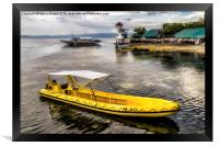 Yellow Tour Boat, Framed Print