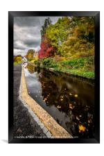 Canal Path Autumn, Framed Print