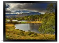 Tarn Hows, Lake District, Cumbria, Framed Print