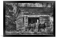 Is This Our Barn, Framed Print