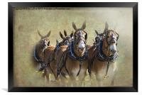 Old West Mule Train, Framed Print