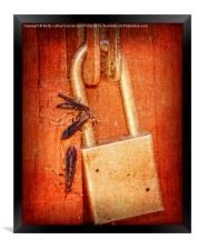Step Away From That Lock!, Framed Print