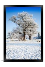 Catton Park, Old Catton, Framed Print