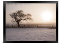 Winter Sunrise, Framed Print