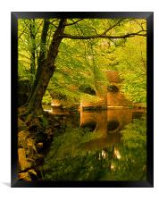 River Plym at Plymbridge,Devon, Framed Print