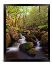 Spring in Padley Gorge, Framed Print
