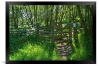 Wharncliffe Woods, Sheffield, South Yorkshire, Framed Print