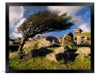 Windswept Tree on Stowes Hill, Framed Print