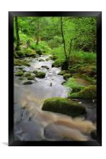 Wyming Brook Riverside Walk, Framed Print