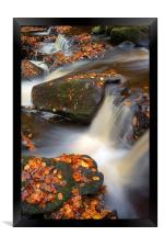 On the Rocks in Padley Gorge , Framed Print