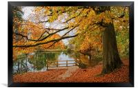 Bentley Brook Mill Pond  , Framed Print