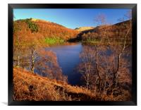 Derwent Reservoir Autumn Colours, Framed Print