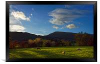 Sheep Grazing in Hope Valley                      , Framed Print