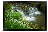 Porter Brook Falls & Wild Garlic                  , Framed Print