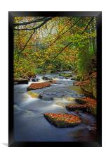 Rivelin during Autumn                             , Framed Print