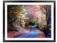 Autumn leaves, Framed Mounted Print