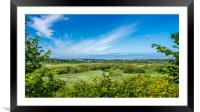 Cardigan Marshes, Framed Mounted Print