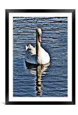 The Swan, Framed Mounted Print