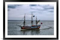 It's A Pirates Life For Me !, Framed Mounted Print
