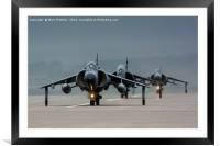 Harrier Jump Jets, Framed Mounted Print