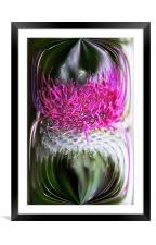 Thistle In Glass, Framed Mounted Print