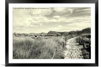 A Walk Through The Dunes, Framed Mounted Print