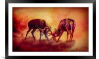 Stags In The Mist, Framed Mounted Print