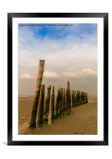 Mid Beach Breakwater at West Wittering, Framed Mounted Print