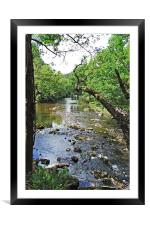 A quiet rural river section, Framed Mounted Print