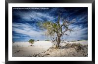 White Sands National Monument #1, Framed Mounted Print