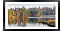 Tarn Hows, Lake District, Cumbria, Framed Mounted Print