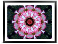 All in Pink, Framed Mounted Print