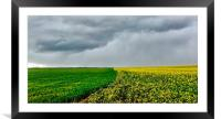 Stormy Sky, Framed Mounted Print