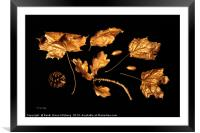 Collection of Gold, Framed Mounted Print