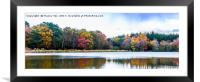 Stover Country Park Lake, Framed Mounted Print